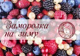 Как замораживать ягоды, овощи и фрукты: подробная инструкция
